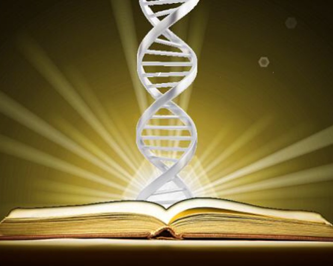 The Bible and Science: Friends or Enemies?